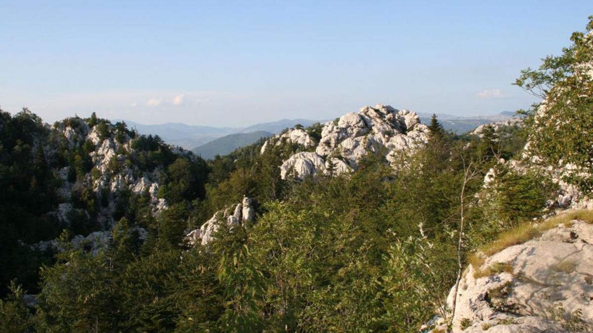 Crnopac pejzaži